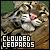 Clouded Leopard: