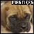 Mastiffs: