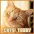 Tabby Cats: