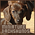 Miniature Dachshunds: