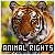 Animal Rights Movement: