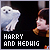 Harry & Hedwig 'Harry Potter':