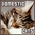 Domestic Cats: