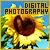 Digital Photography: